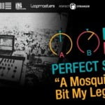 Perfect Stranger Remix Album – A Mosquito Bit My Leg