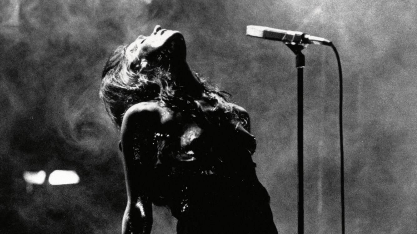 בין חופש לכישוף: תגליות מוזיקליות במסלול זמר יוצר