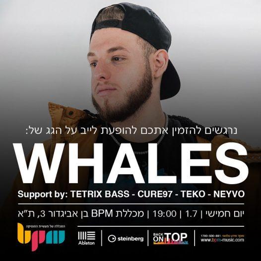 Whales + אמנים אורחים בהופעה חיה על גג מכללת BPM